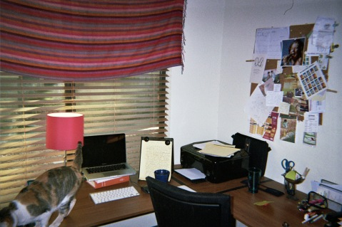 allegra hyde desk